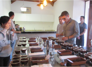 Cocatrel incorpora a M Coffees e amplia Departamento de Exportação e Cafés Especiais