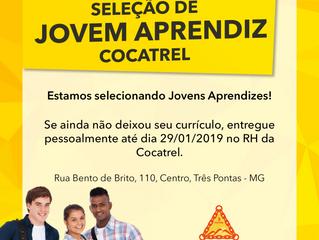 Venha ser um jovem aprendiz na Cocatrel