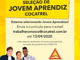 Cocatrel está selecionando Jovens Aprendizes