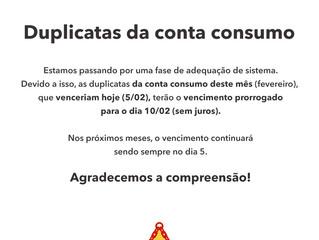 Prorrogação de duplicatas de conta consumo
