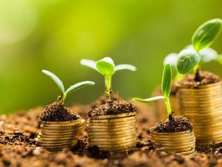 Condições para Financiamento de Material de Colheita e Sacaria Safra 2019/2020