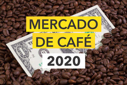 2020: Safra histórica para o Brasil