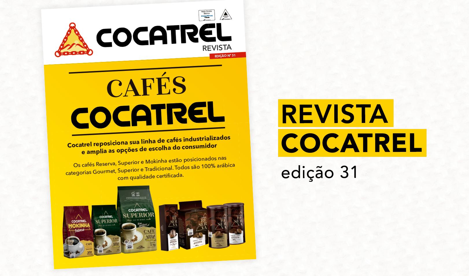 Revista 31