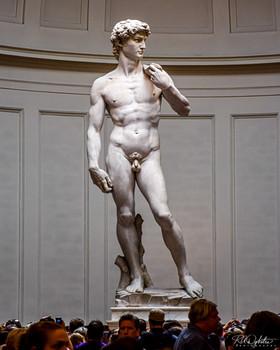 David - Florence Italy