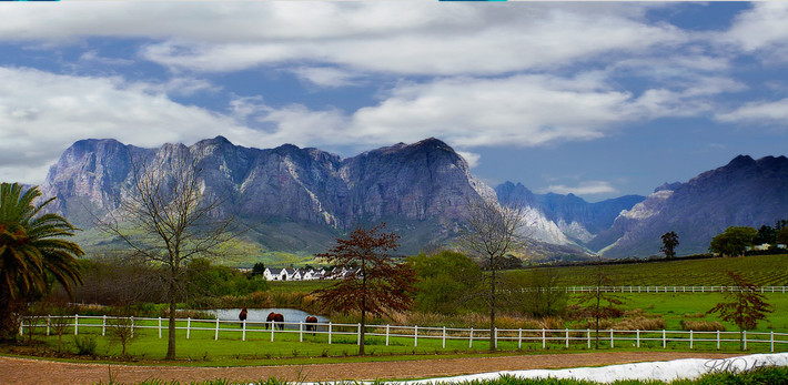 South Africa Wine country