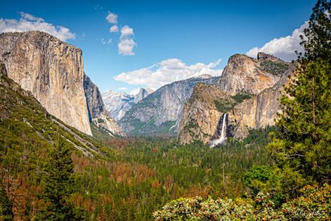 May2017_Yosemite_RAD_1267.jpg