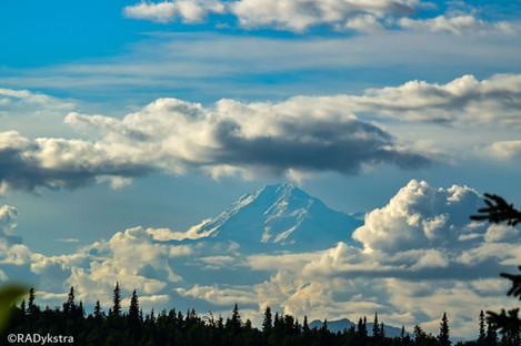 Alaska_Denali_RAD_-0700.JPG