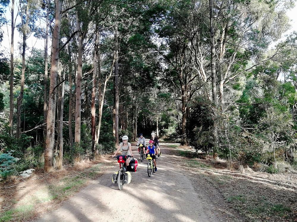Tour du monde en famille à vélo : Great Southern Rail Trail
