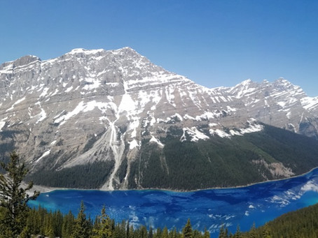 Semaine 46 : De Jasper à Banff, The Icefields Parkway