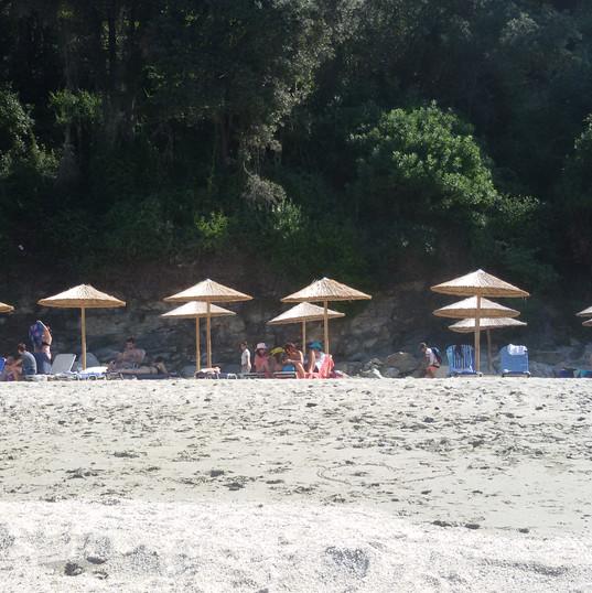 umbrellas 5.jpg