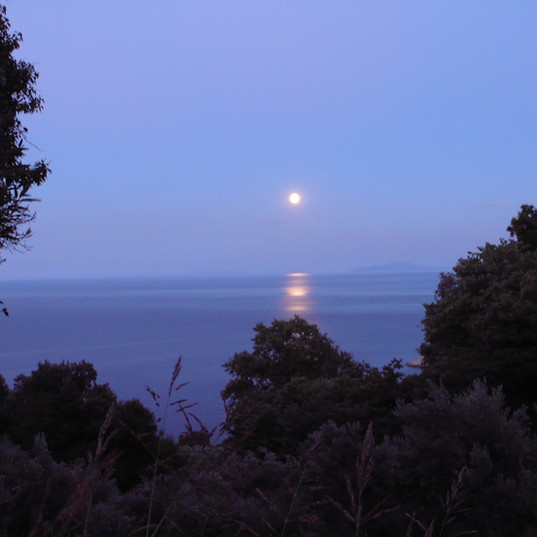 August moon 2.jpg