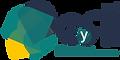 cayri-logo-2021-e (1) (1).png