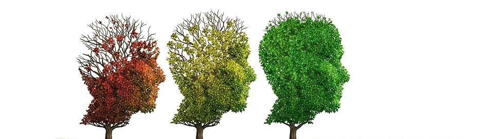 Hirnverletzungen werden in der Neuropsychologie erfolgreich behandelt  behandelt werden
