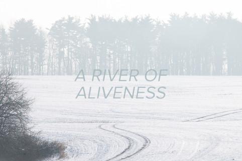 A River of Aliveness