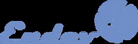 logo_endev.png