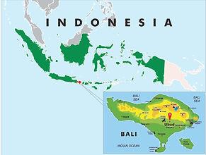 Bali Map.jpg
