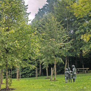 Lebensgarten mit Moorbabybäumchen