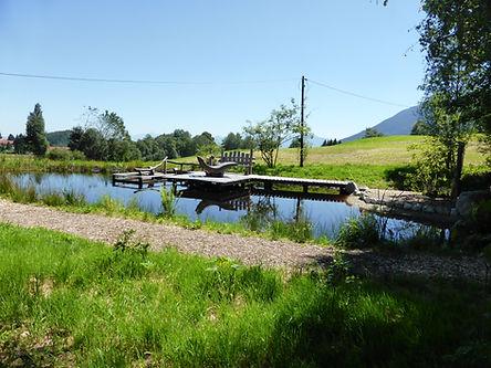 Moorweiher Bad Kohlgrub Juli 16.JPG