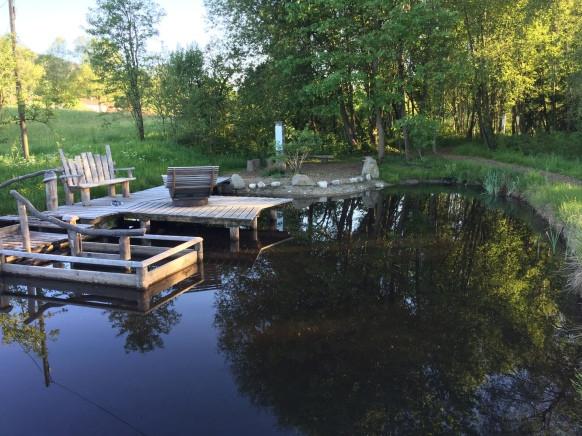 Moorweiher Bad Kohlgrub