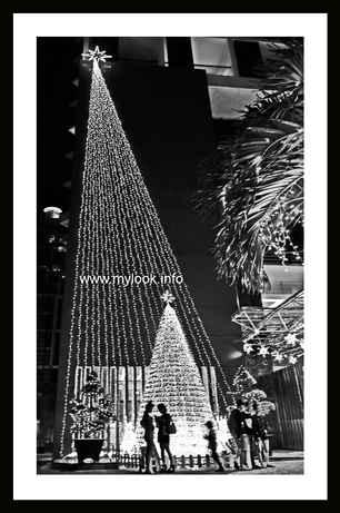 Вьетнамское католическое рождество