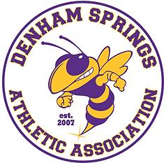 DSAA logo FINAL color corrected est.png