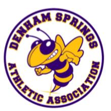 DSAA Logo.png