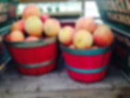 basket of peaches.jpg