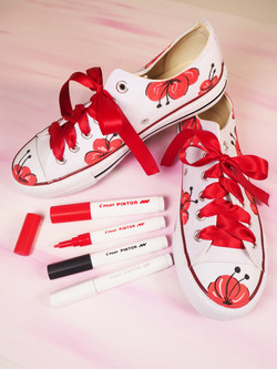 Canvass trainers decorated by Pintor