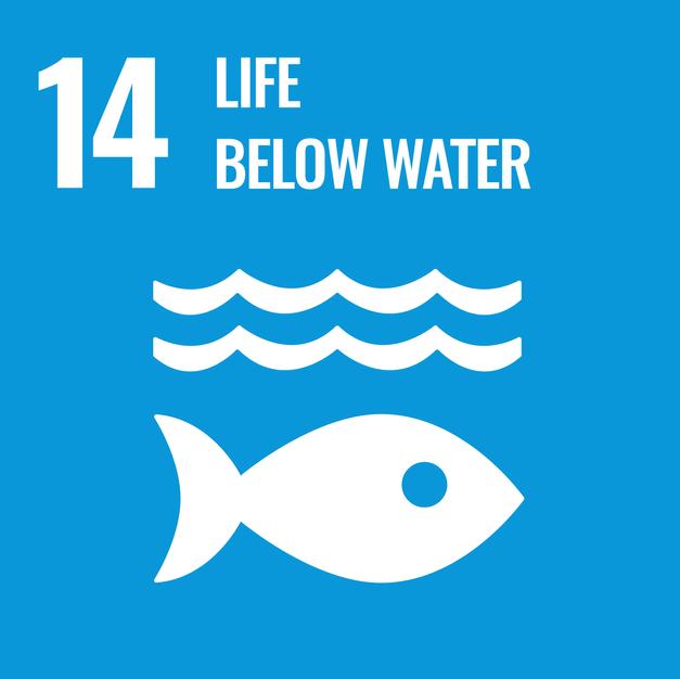 13.Life below Water