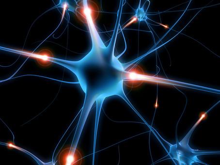 Neurofeedback - was sind Gehirnwellen und warum sind sie interessant?