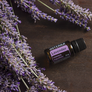 Lavender 15 ml