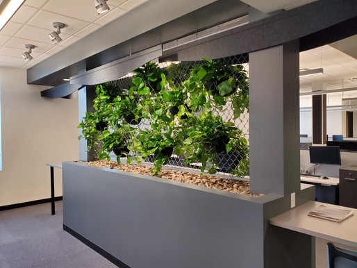 Make your office more appealing for employees returning after Covid.