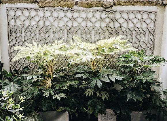 Garden Aluminum Panels