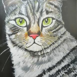 """Marion Mardones: """"Gato"""""""