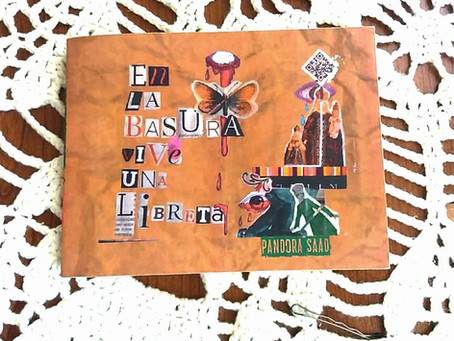 """Libro Poesía """"En la basura vive una libreta"""": Pandora Saad"""