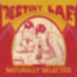 Destiny Lab Lyrics: Naturally Selected