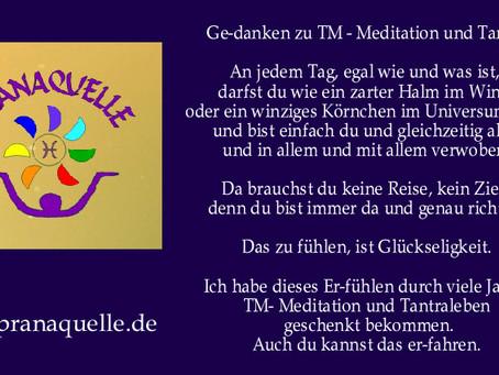 Ge-danken zu Meditation und Tantra