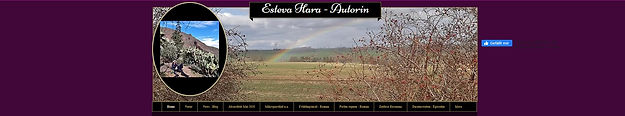 Banner Esteva Hara.jpg