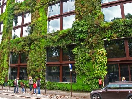Fachadas verdes melhoram a acústica urbana?