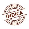 logo audium indica.png