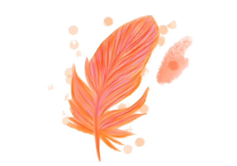 orange feather no background.png