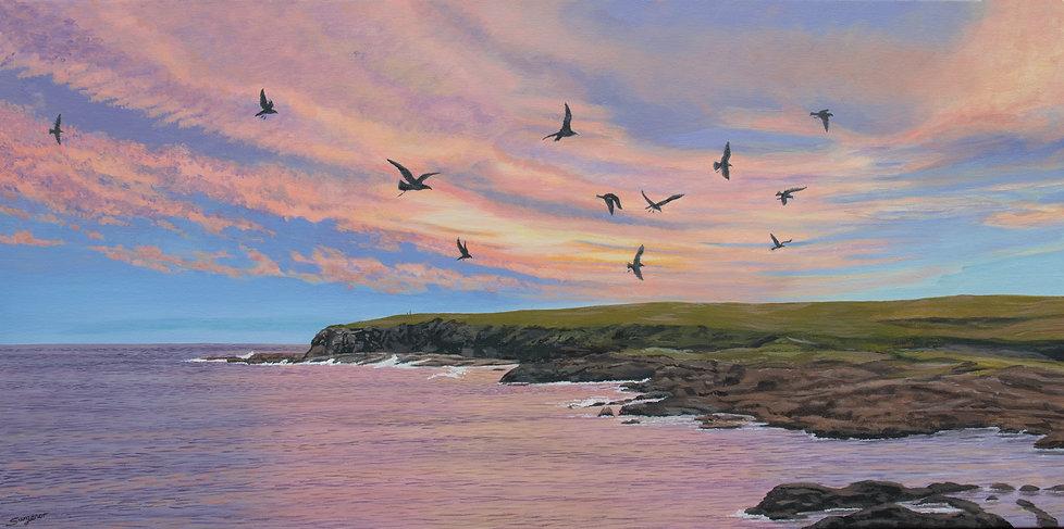 Freda Surgenor - evening seagulls
