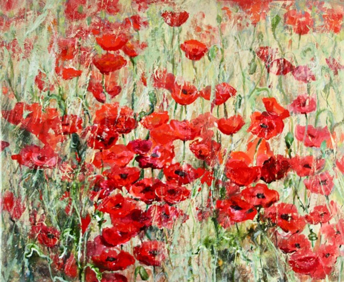 Dianne Ogg - Red Poppies, Provence, Fran
