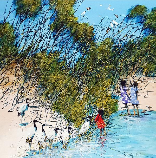 Richard Bogusz - ibis creek