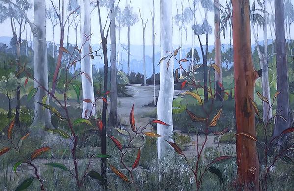 Janet Palmer - Garigal National Park.jpg