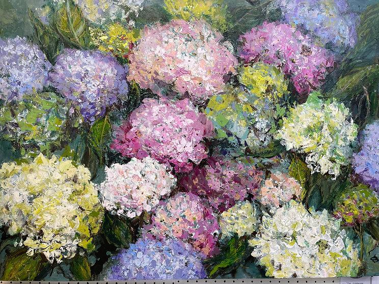 Dianne Ogg - Hydrangea Border 79h x 102w cm.jpg