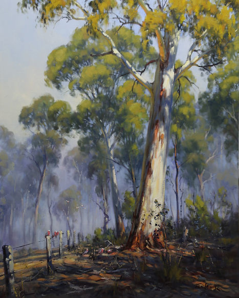 Ted Lewis _ boundary fence 76x61cm