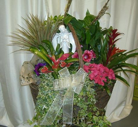 Angel English Garden #2