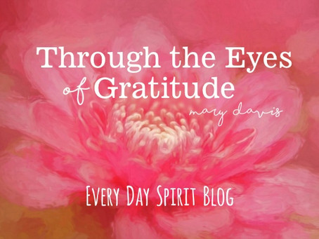 Through the Eyes of Gratitude