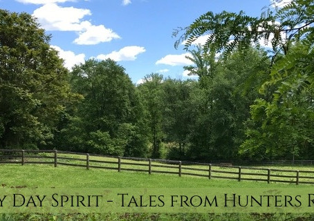 Tales From Hunters Road